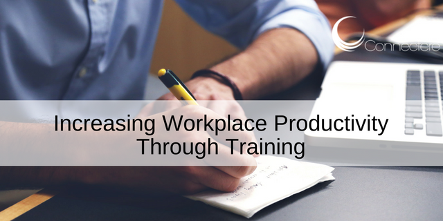Increasing Workplace Productivity Through Training