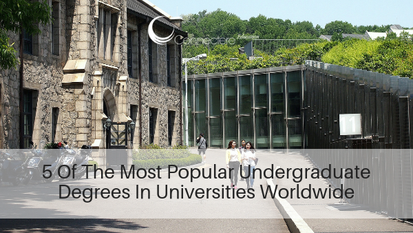5 Of The Most Popular Undergraduate Degrees In Universities Worldwide